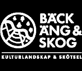 Bäck, äng & skog